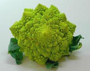 Fractal Broccoli!